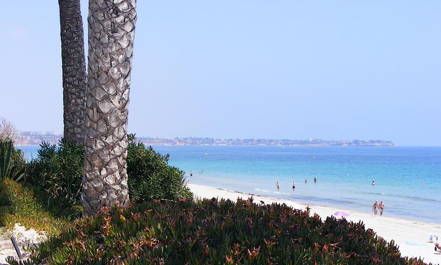 Seascape Photograph - Mil Palmeras Beach by Jacqueline Essex