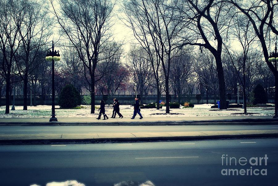 Mild Winter Chicago Photograph