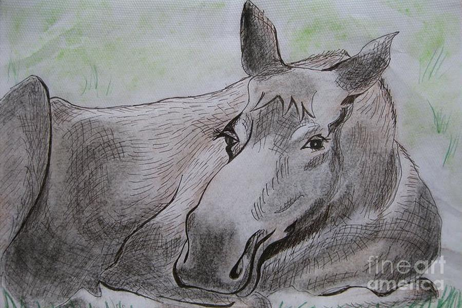 Pen And Ink Drawing Drawing - Mildred The Moose Resting by Stella Sherman