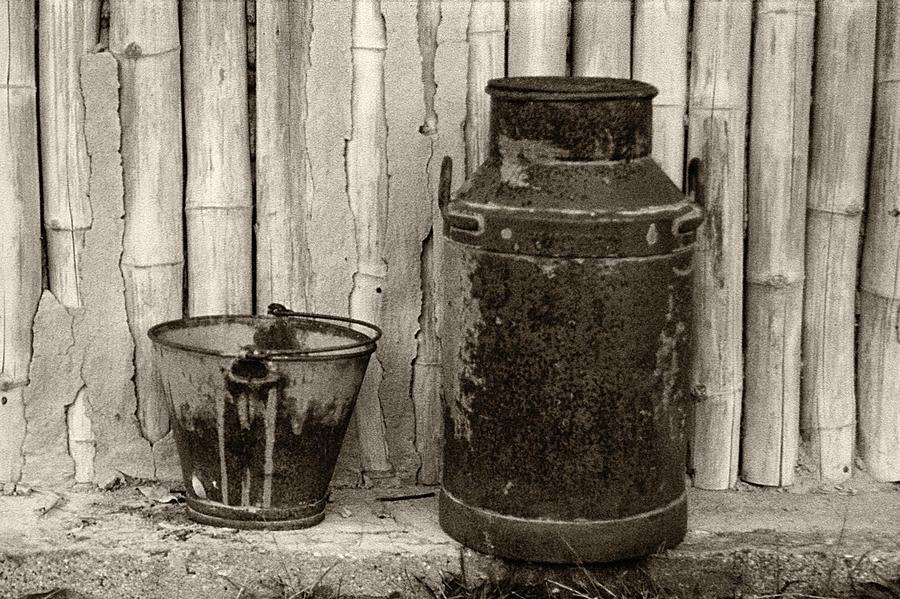 Milk Can by Amarildo Correa