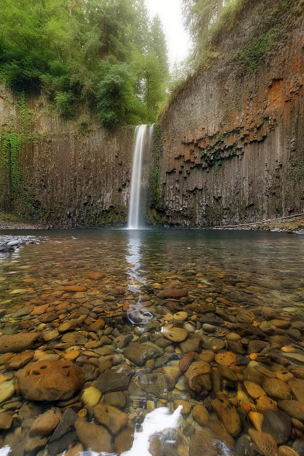 Abiqua Falls Photograph - Milky Reflection by David Gn