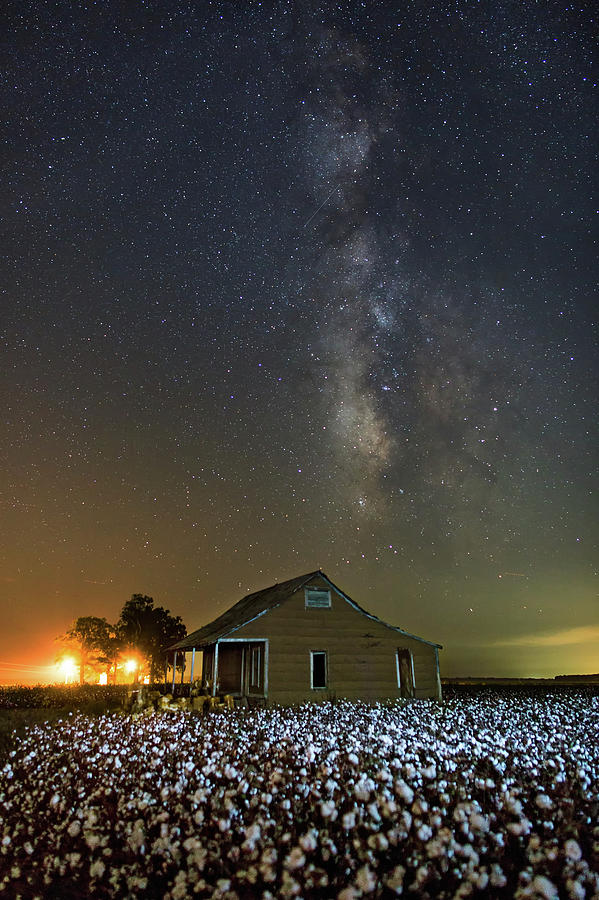 Milky Way and Cotton by Eilish Palmer