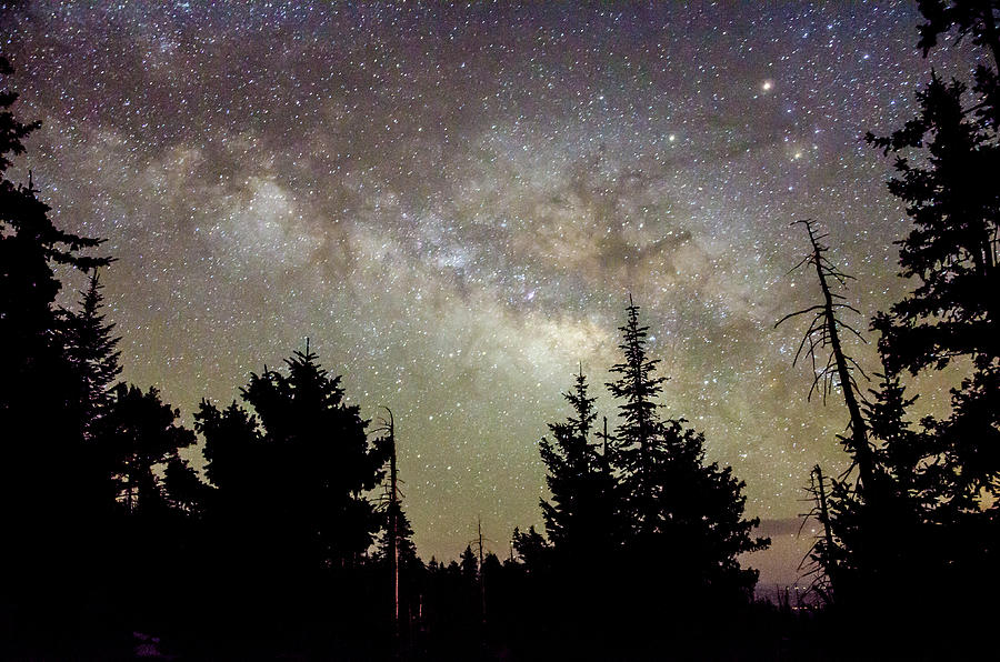 Milky Way from Mt. Graham by Ryan Ketterer