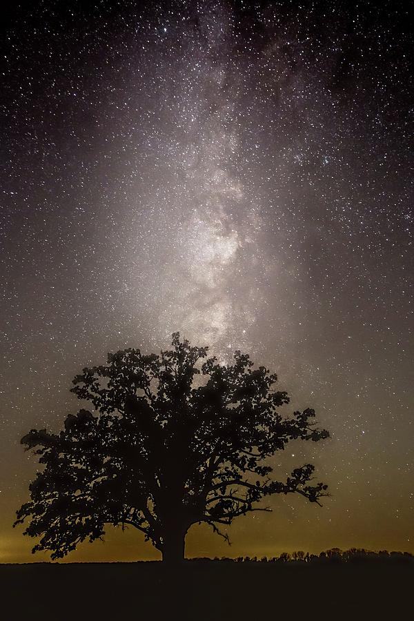 Milky Way over McBaine Oak  by Harold Rau