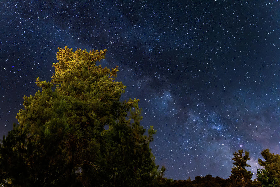Cyprus Photograph - Milky Way Over The Forest At The Troodos Mountains In Cyprus. by Iordanis Pallikaras