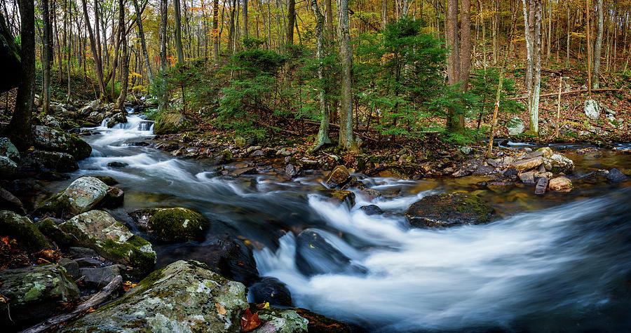 Mill Creek in Fall #2 by Joe Shrader