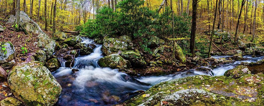 Mill Creek in Fall #4 by Joe Shrader