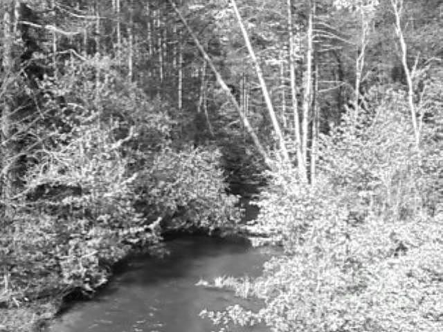 Landscape Photograph - Millstone Creek North by Melissa Miller