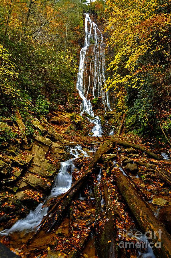 Canvas Prints Photograph - Mingus Falls by Dave Bosse