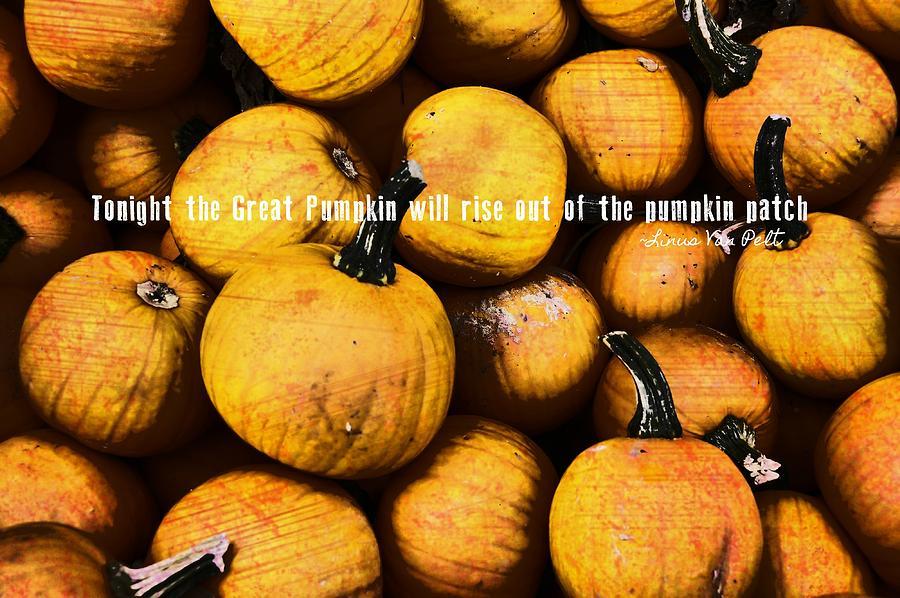 Pumpkin Photograph - Mini Pumpkin Patch Quote by JAMART Photography