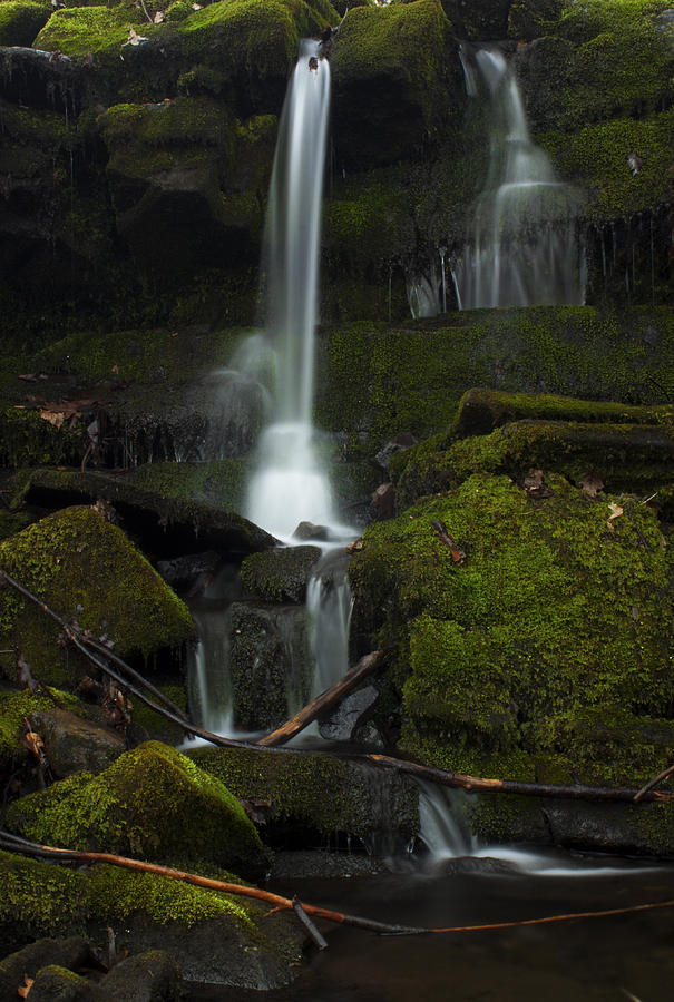Waterfall Photograph - Mini Waterfall in the Forest by Jeff Severson