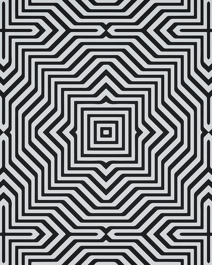 Black And White Optical Illusion Artwork