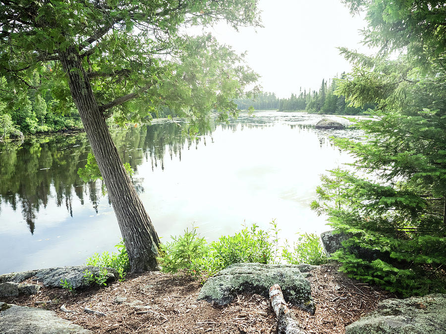 Nature Photograph - Minnesota Boundary Waters by Whitney Leigh Carlson