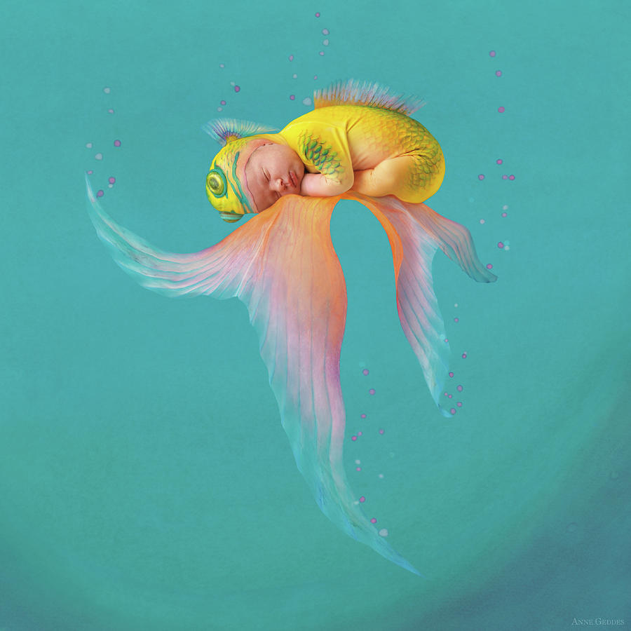 Under The Sea Photograph - Mira As A Tropical Fish by Anne Geddes