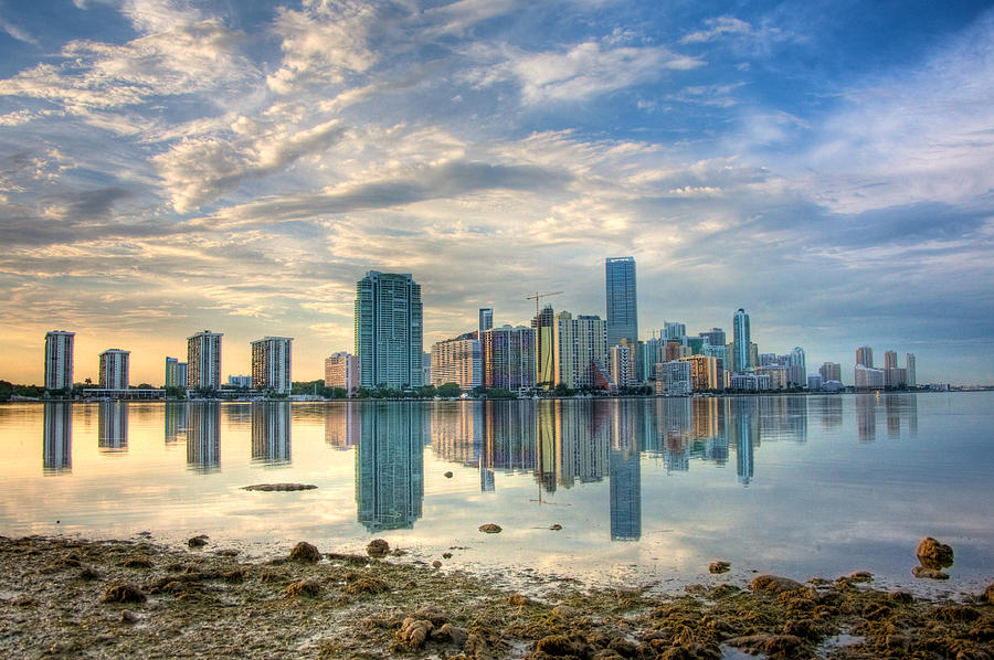 Miami Photograph - Mirror City by William Wetmore