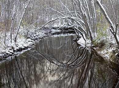 Mirror Image Photograph by Celeste  Steele