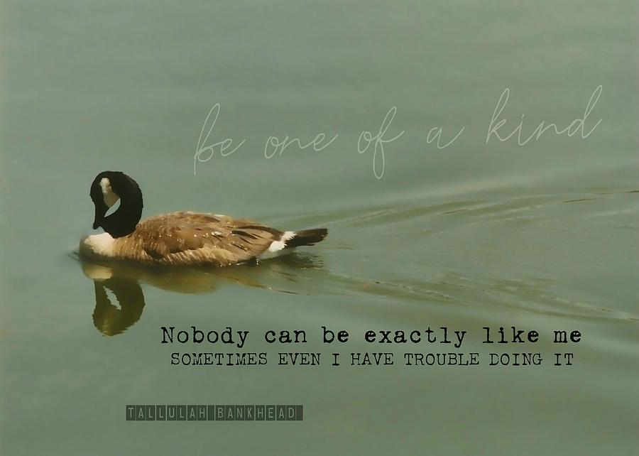Goose Photograph - Mirror Image Quote by JAMART Photography