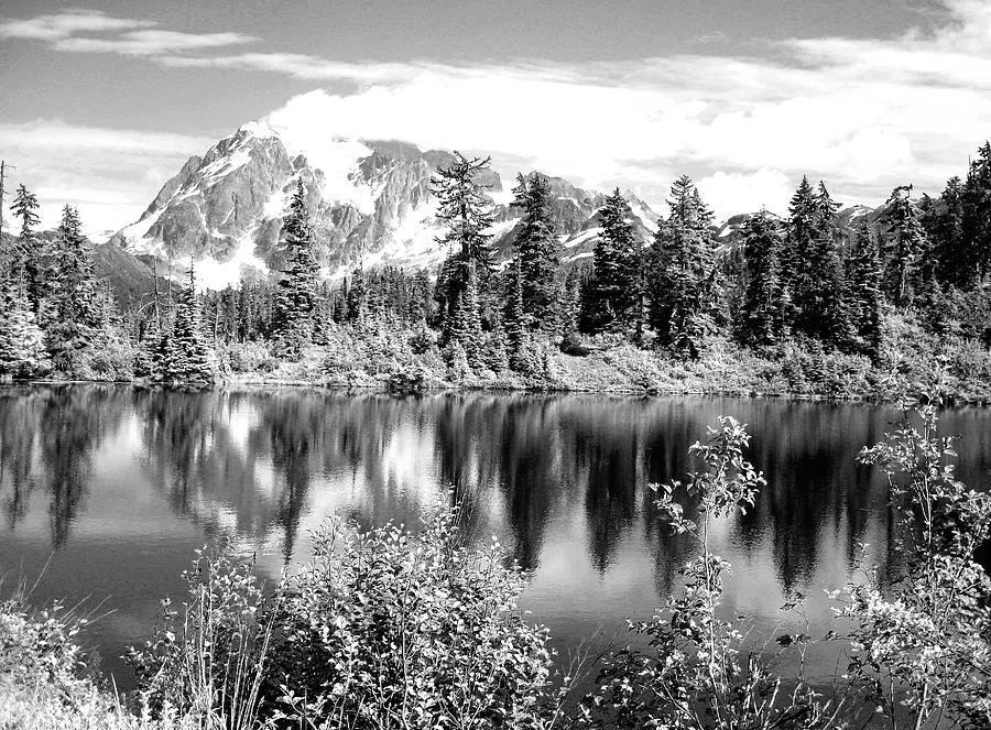 Mirror Lake by Jenny Mead