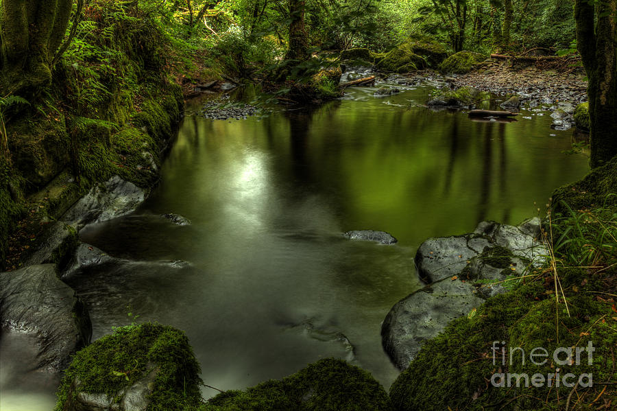Mirror Pool Photograph by Marc Daly