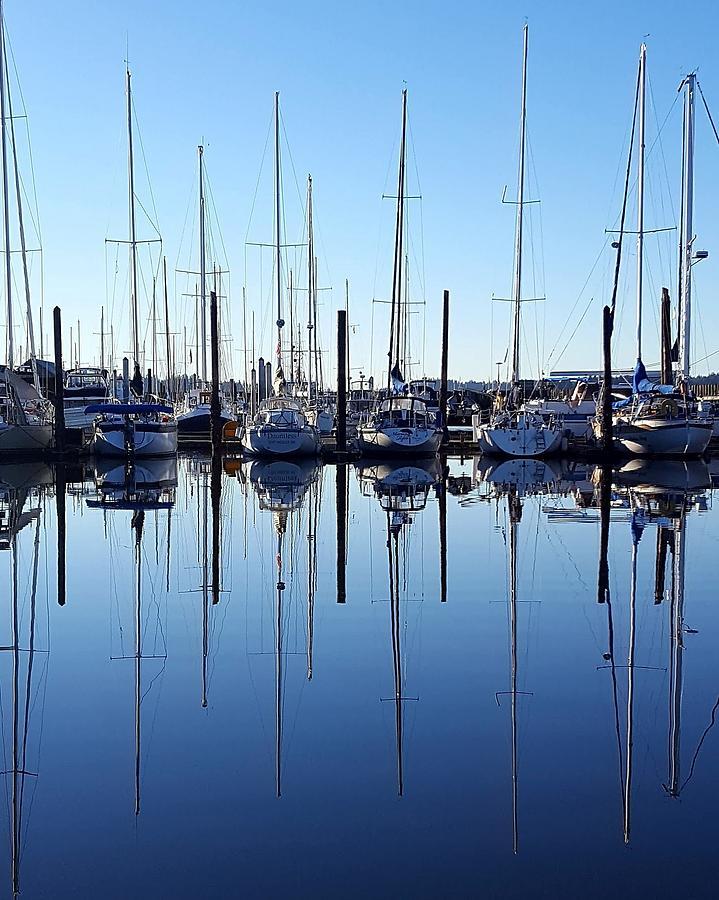 Sailboats Photograph - Mirrored Masts  by Rhonda Feeback