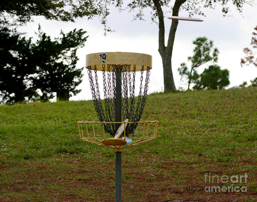Disc Golf Photograph - Missing Chains by Marty Gayler