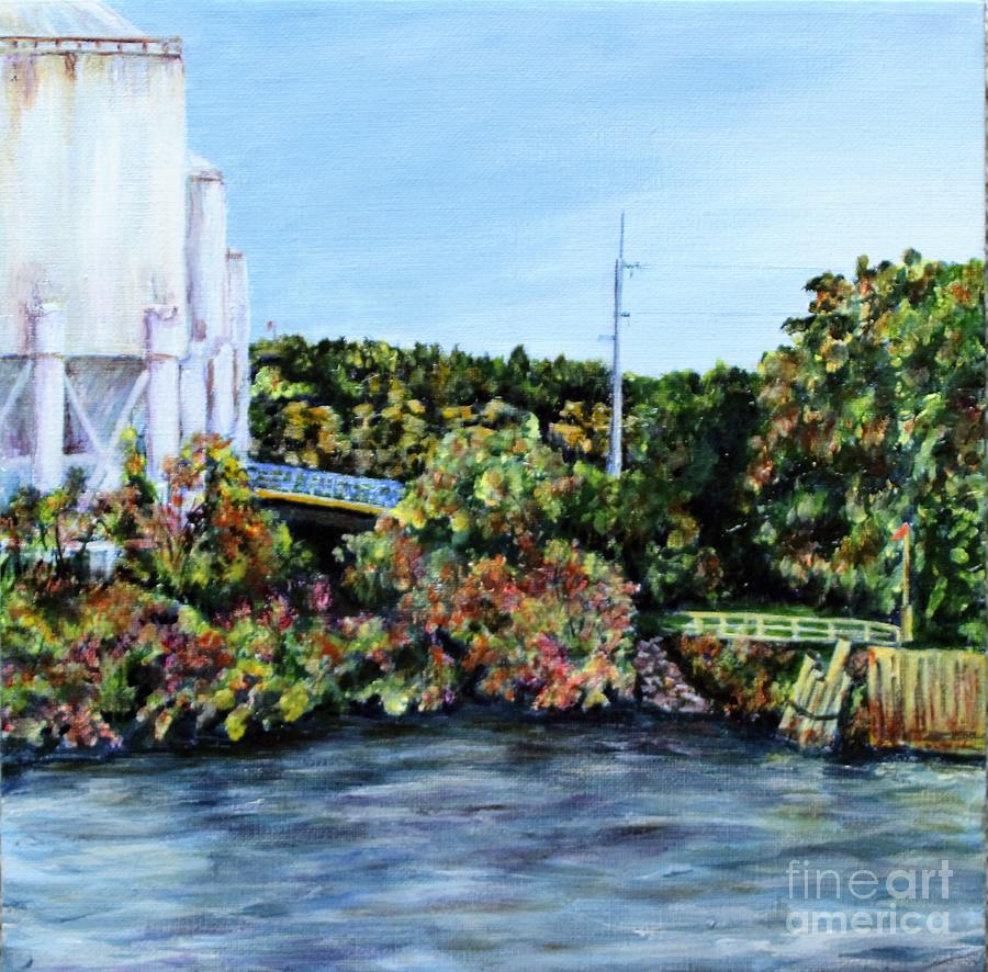 Mississippi View  by Linda Steine