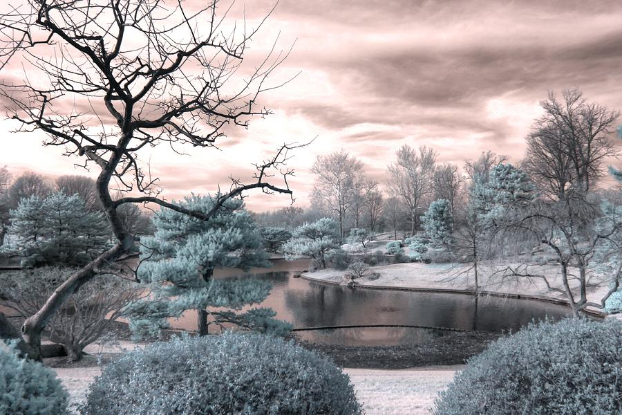Missouri Botanical Garden Photograph - Missouri Botanical garden infrared pond blue by Jane Linders