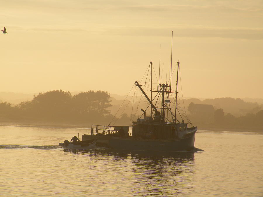 Fishing Photograph - Mister G In The Mist by Donald Cameron