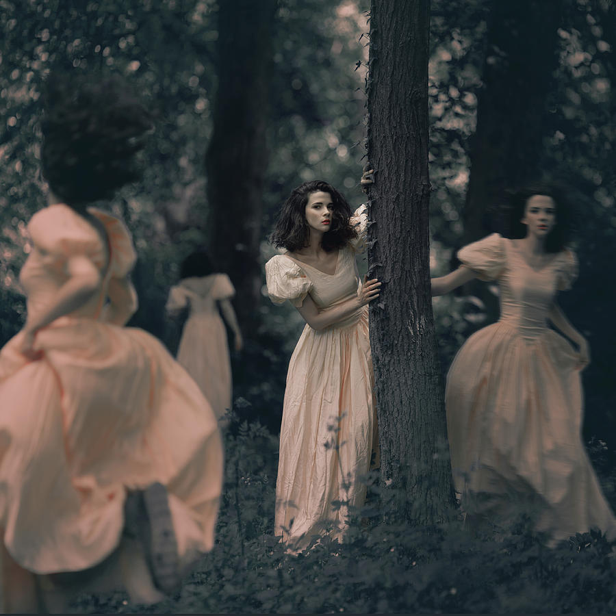 Misterious Forest Photograph by Anka Zhuravleva