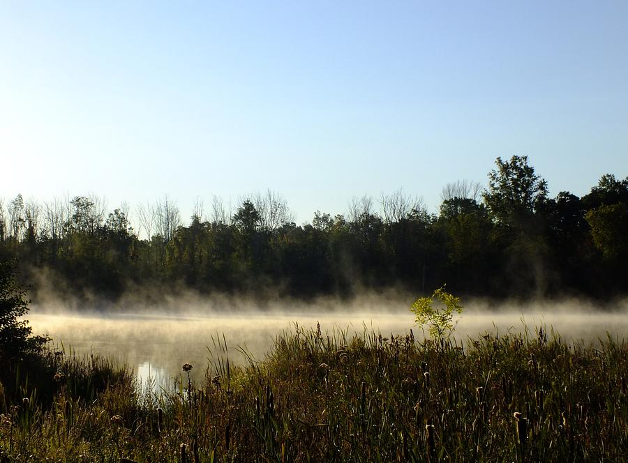 Mists on the Welland by Peggy King