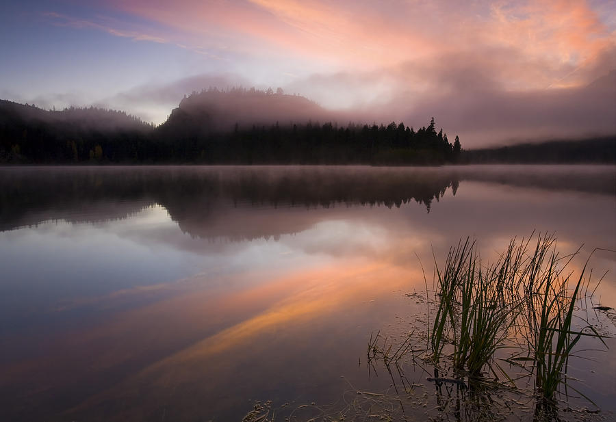 Sunrise Photograph - Misty Dawn by Mike  Dawson