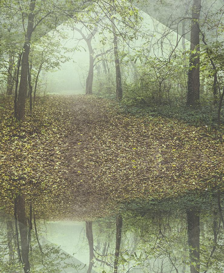 Misty Forest Mixed Media