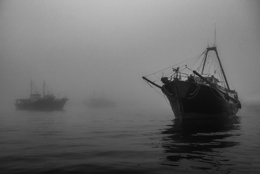 Misty Harbor by Brad Koop