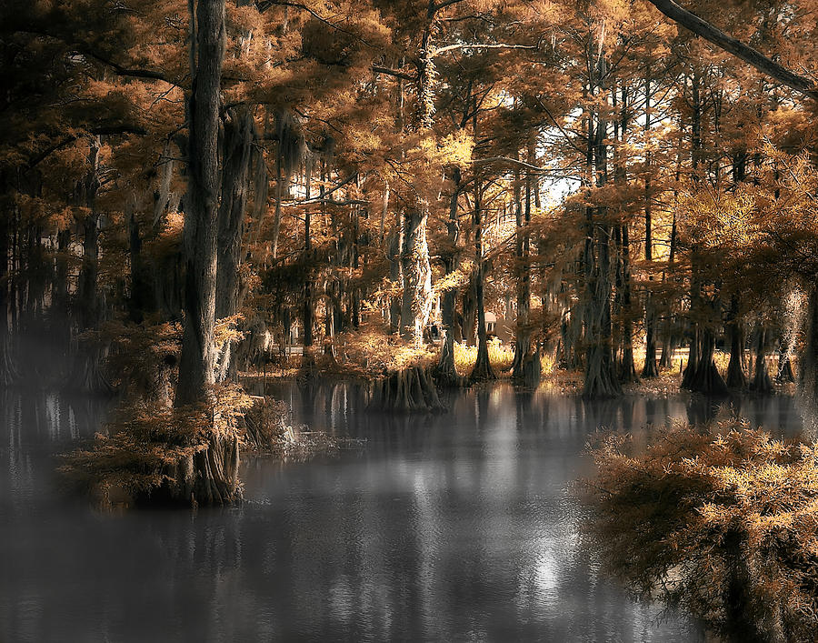 Lake Photograph - Misty Lake by Cecil Fuselier