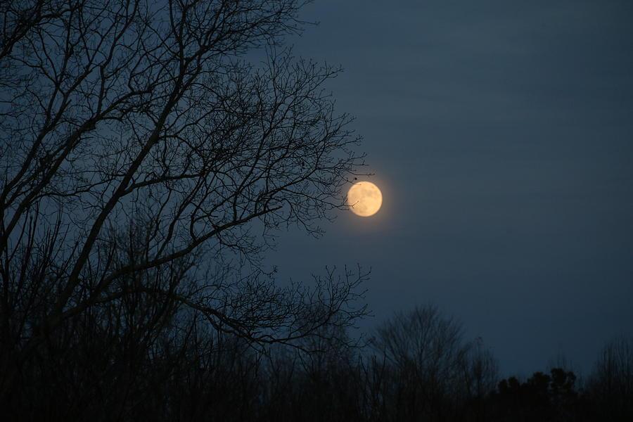 Moon Photograph - Misty Moonrise by Kathryn Meyer