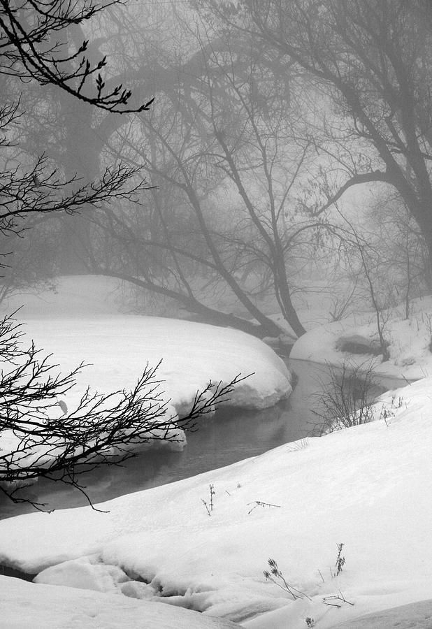 Landscape Photograph - Misty Morning by Julie Lueders