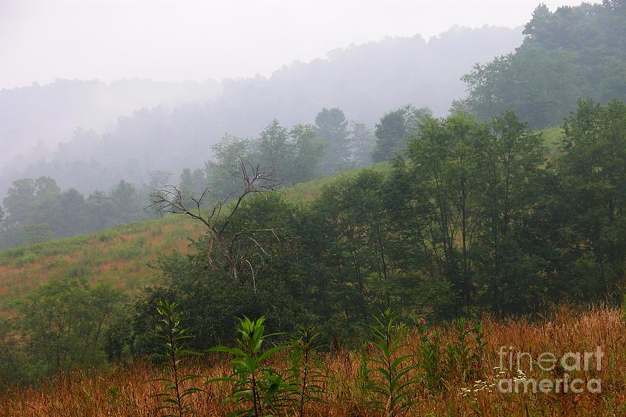 Family Farm Photograph - Misty Morning On The Farm by Thomas R Fletcher