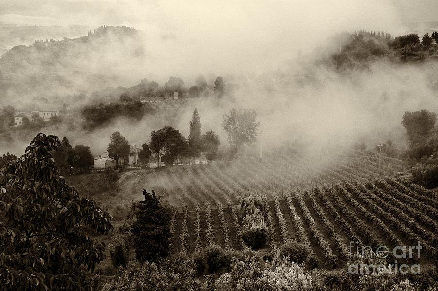 Tuscany Photograph - Misty Morning by Silvia Ganora