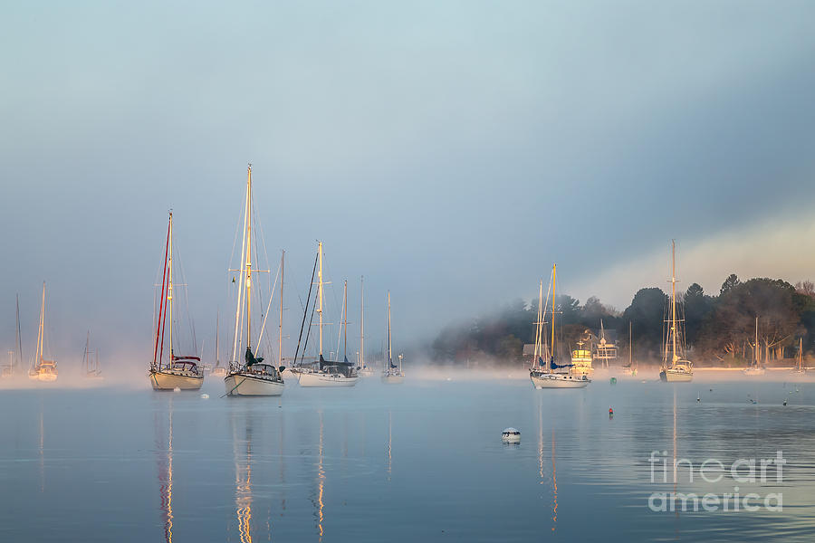 Misty Morning by Susan Cole Kelly