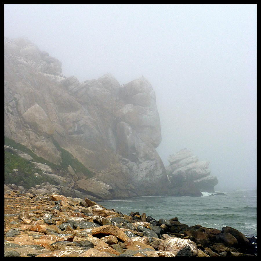 morro bay chat Outdoor adventure awaits you in morro bay first, hop on a bay cruise — you'll be given the chance to explore a sand pit and take pictures of sea otters.