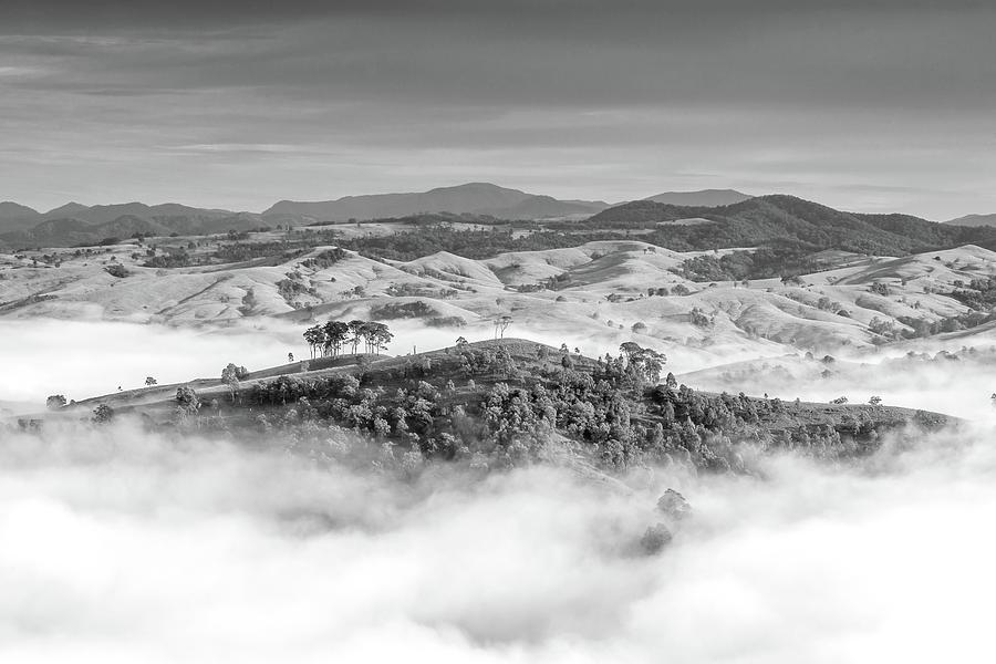 Misty Mountain Hop Photograph