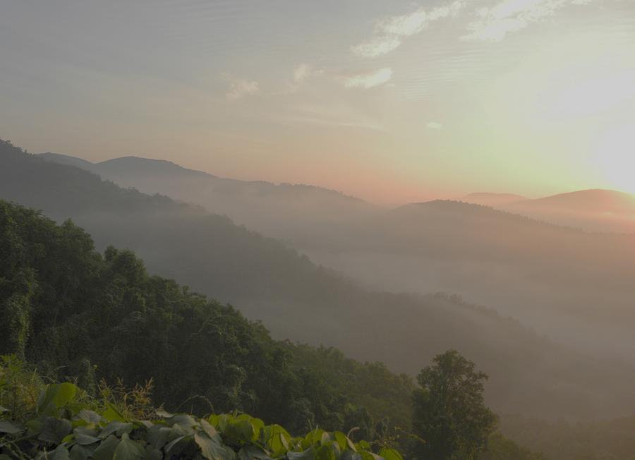 Western North Carolina Photograph - Misty Nc Sunrise II by Cindy Gacha