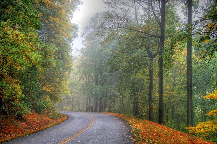 D L Ennis Photograph - Misty October by D L Ennis