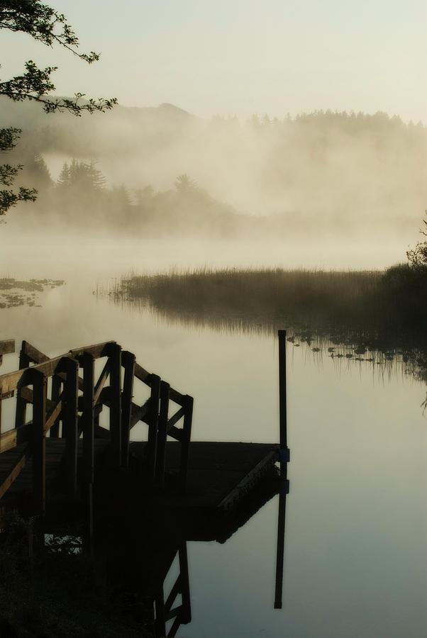 Oregon Photograph - Misty Oregon Morning by Renee Hong
