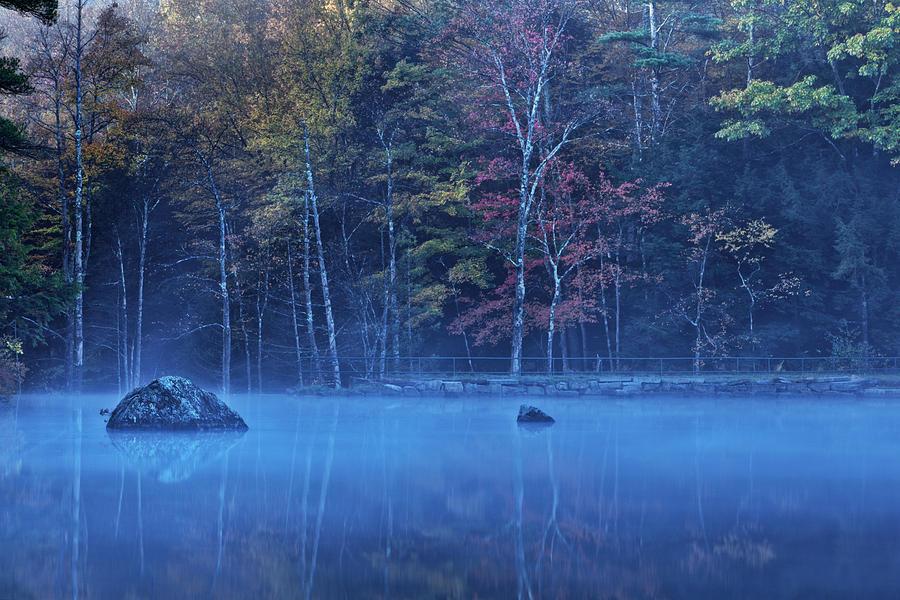 Misty Reflections by John Sandiford