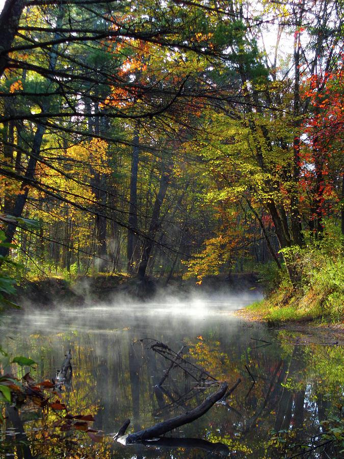 Misty Photograph - Misty River by Holly Cyr