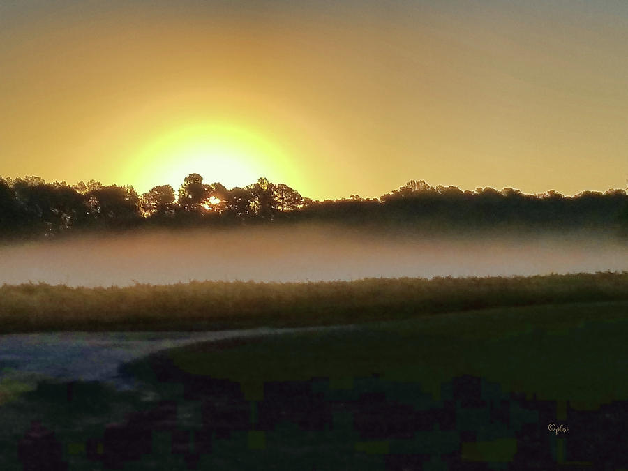 Misty Sunrise by Paulette B Wright