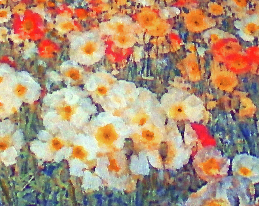 Mixed Poppies Painting