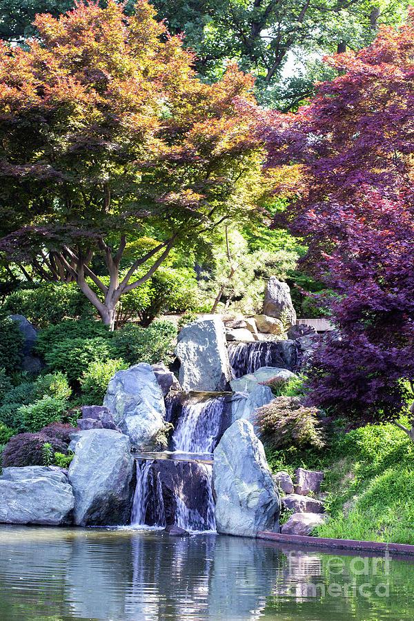 MO Botanical Garden Waterfall by Ty Shults
