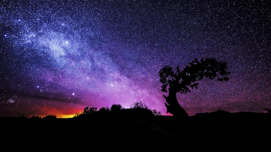 Night Photograph - Moab Skies by Chad Dutson